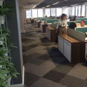 Tourvest Office Design